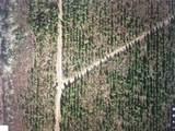 0 Ab162 Hardin County Woods - Photo 11