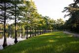 519 Woodsy Pine Court - Photo 29