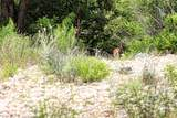 277 River Ridge - Photo 23