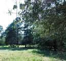 1107 County Road 151 - Photo 37