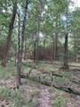 Tr 69 70 Scarlet Oak Trail Trail - Photo 1