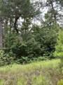 TBD Green Tree Drive - Photo 1