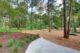 342 Cadence Hills Loop - Photo 17