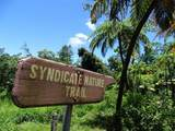 0 Syndicate Road - Photo 16