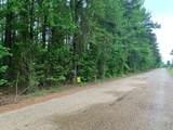 0 Jones Lake Road - Photo 1