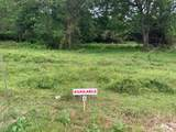 Lot 9 County Road 136 - Photo 7