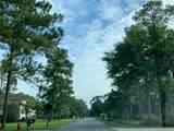 257 Mayerling Drive - Photo 3