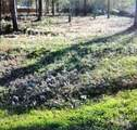 394 County Road 3414 - Photo 1