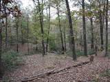 Lots  377-378A Timber Ridge - Photo 4