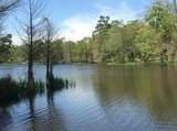 1541 Emerald Lakes Drive - Photo 5
