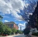 1606 Saint Charles Street - Photo 22