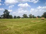 37.36 Acres Fm 1696 Road - Photo 9