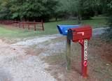 25450 Brushy Creek Drive - Photo 26