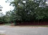 25450 Brushy Creek Drive - Photo 28