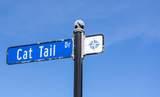 26441 Cat Tail Drive - Photo 1