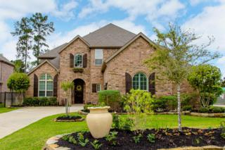 226 Greylake Place, The Woodlands, TX 77354 (MLS #10454144) :: Texas Home Shop Realty