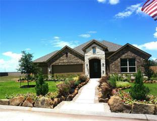 2959 Gibbons Hill Lane, League City, TX 77573 (MLS #12877734) :: NewHomePrograms.com LLC