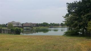 820 Buttonwood Drive, Texas City, TX 77591 (MLS #13870433) :: NewHomePrograms.com LLC