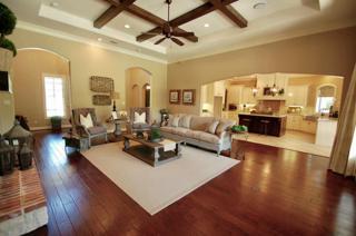 17823 Appaloosa Drive, Waller, TX 77484 (MLS #14125445) :: NewHomePrograms.com LLC
