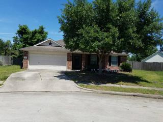 19438 Pinewood Mist Lane, Humble, TX 77346 (MLS #14801368) :: NewHomePrograms.com LLC