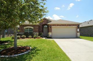 3205 Carriage Cove Court, League City, TX 77539 (MLS #15384607) :: Texas Home Shop Realty