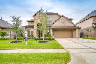 6109 Norwood Mills Court, League City, TX 77573 (MLS #19100065) :: Texas Home Shop Realty