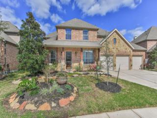 12107 Wind Cove Place Court, Humble, TX 77346 (MLS #20518497) :: Magnolia Realty