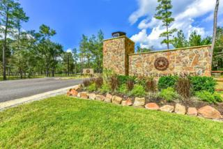 0 Chisolm Trail, New Waverly, TX 77358 (MLS #22609449) :: Mari Realty