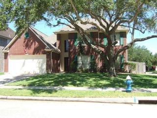 16102 Ruffian Drive, Friendswood, TX 77546 (MLS #25528674) :: Texas Home Shop Realty