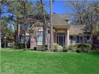 14 White Fawn Drive, The Woodlands, TX 77381 (MLS #25982057) :: Magnolia Realty