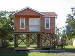 342 14th Street, San Leon, TX 77539 (MLS #2791837) :: NewHomePrograms.com LLC