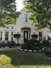 1132 Shady Knoll Lane, League City, TX 77573 (MLS #35596409) :: Texas Home Shop Realty