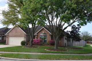 2519 Royal Terns Court, League City, TX 77573 (MLS #39273447) :: Texas Home Shop Realty