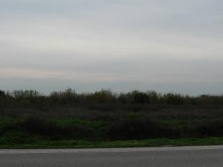 1008 Bay Boulevard, Gilchrist, TX 77617 (MLS #41604051) :: NewHomePrograms.com LLC