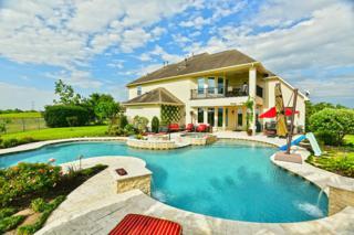 5329 Southchase Lane, League City, TX 77573 (MLS #41675147) :: Texas Home Shop Realty