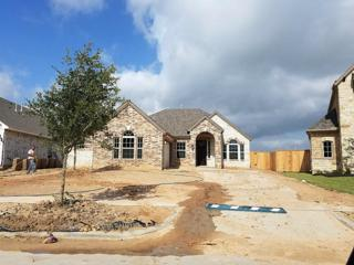 2514 Pisoni Lane, League City, TX 77573 (MLS #43478086) :: Texas Home Shop Realty
