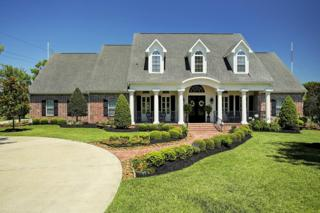 3003 Mandale Road, Friendswood, TX 77546 (MLS #48884416) :: Texas Home Shop Realty