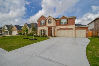 1519 Palo Duro Canyon, League City, TX 77573 (MLS #53695849) :: Texas Home Shop Realty