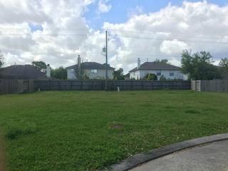 353 Brandy Ridge, League City, TX 77539 (MLS #54401333) :: Texas Home Shop Realty