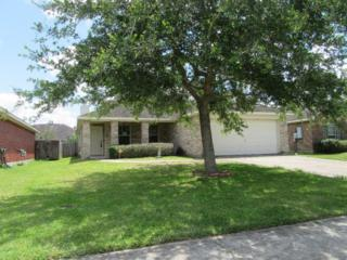 247 Rolling Brook Drive, League City, TX 77539 (MLS #57448170) :: Texas Home Shop Realty