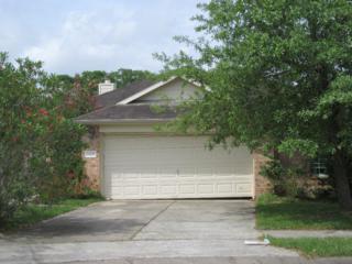 1208 Halls Bridge, League City, TX 77573 (MLS #7147274) :: Texas Home Shop Realty