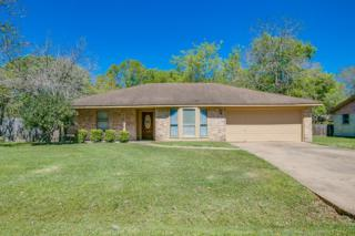 1517 Sherl Street, League City, TX 77573 (MLS #74627064) :: Texas Home Shop Realty