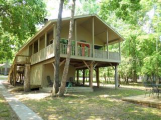61 Pine Cove Drive, Coldspring, TX 77331 (MLS #76964258) :: Mari Realty