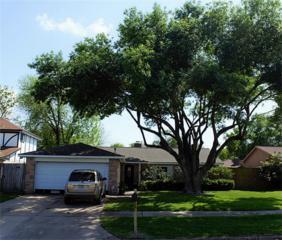 14323 Quiet Town Lane, Sugar Land, TX 77498 (MLS #81058724) :: Magnolia Realty