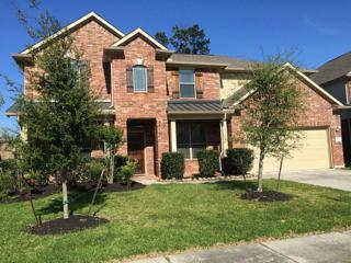 26009 Kingshill Drive, Kingwood, TX 77339 (MLS #82523204) :: Magnolia Realty