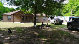 12235 Overhill Road, Plantersville, TX 77363 (MLS #92805456) :: NewHomePrograms.com LLC