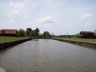 118 Wildwood Lake Drive, Huntsville, TX 77340 (MLS #95527741) :: Mari Realty
