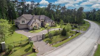 82 S Tranquil Path, The Woodlands, TX 77380 (MLS #99504483) :: Magnolia Realty