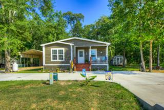 311 Leaning Oak Drive, Point Blank, TX 77364 (MLS #11576590) :: Mari Realty