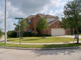 3031 Camelia View Lane, League City, TX 77539 (MLS #22565474) :: Texas Home Shop Realty